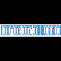 Dynamo UTD