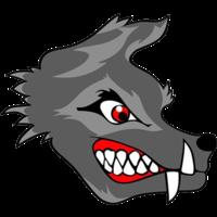 SC Wolves 2