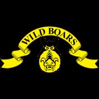 FC Wartti/WB